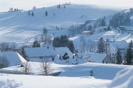 Rodeln in Schopfheim-Gersbach