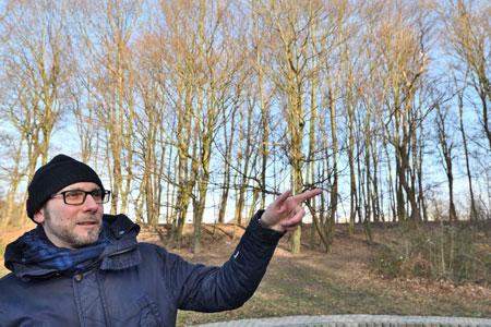 Durchforstung am Ümminger See: Wäldchen am Ostufer wird stabilisiert