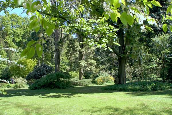 """Neue Broschüre """"Gärten und Parks"""" im Münsterland - Auch Ibbenbürener Gärten laden ein"""