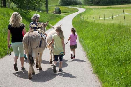 Lama- und Esel-Trekking in der Ferienregion Südwärts