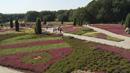 Schneverdingen in der Lüneburger Heide Imagevideo