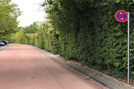 Fahrradstraßen mit wenig Rollwiderstand - Attraktivität soll Lust auf Umstieg machen