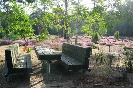 Schönste Picknickplätze im Münsterland: Wacholderheide in Telgte und Haus Nottbeck in Stromberg